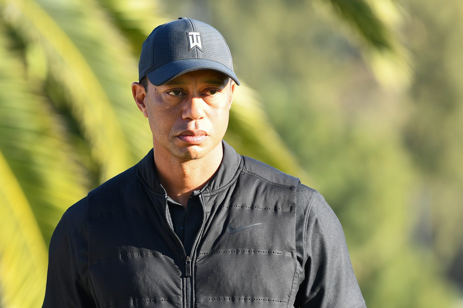 Tiger Woods: the causes of his shocking car accident